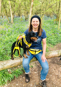 dog in yellow space awareness harness and yellow keep away lead
