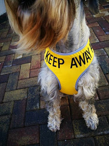 "Adjustable Dog Harness ""KEEP AWAY"" & ""ANXIOUS"" - Large"
