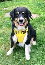 "Adjustable Dog Harness ""KEEP AWAY"" & ""ANXIOUS"" - Large V3"
