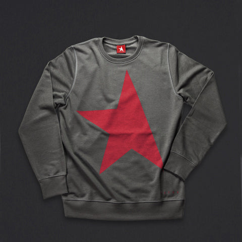 14th women's TITOS crewneck pewter/red large star logo