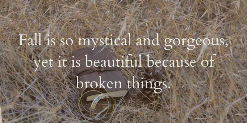 Fall is so mystical and gorgeous, yet it is beautiful because of broken things.