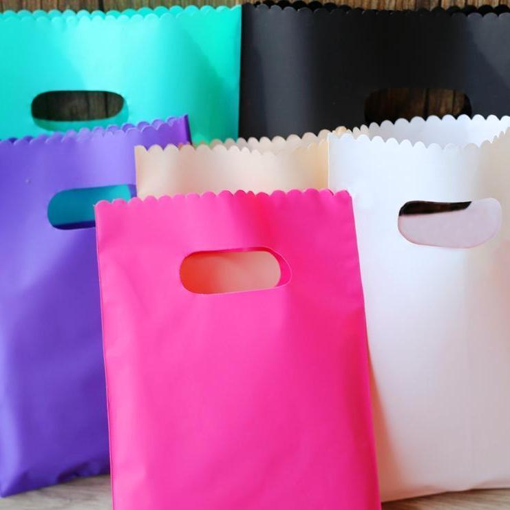 (L) 20cmx25cm Plastic Bags with Handle