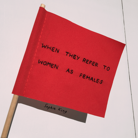 when they refer to women as females red flag sophie king art embroidery textiles