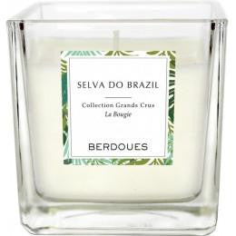 CANDELA BERDOUES COLLECTION GRANDS CRUS SELVA DO BRAZIL