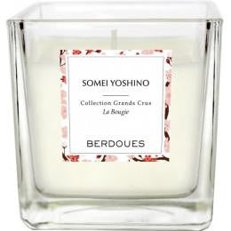 CANDELA BERDOUES COLLECTION GRANDS CRUS SOMEI YOSHINO