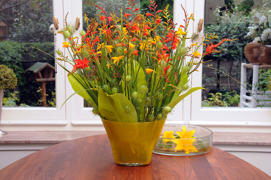 Cut flower crocosmia