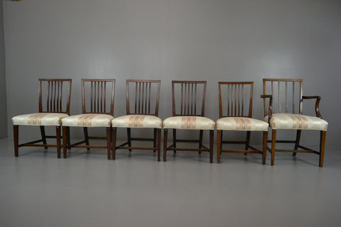 Set 6 Sheraton Style Mahogany Dining Chairs - Kernow Furniture 100s vintage, retro & antique items in stock
