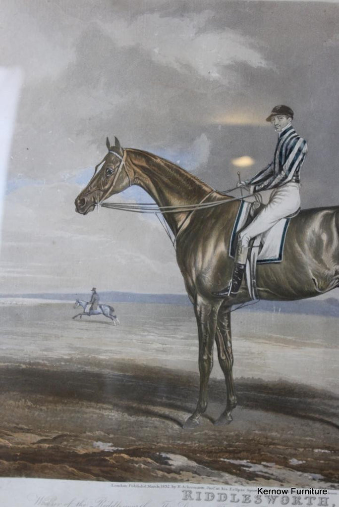 Riddlesworth Racehorse Framed Print - Kernow Furniture