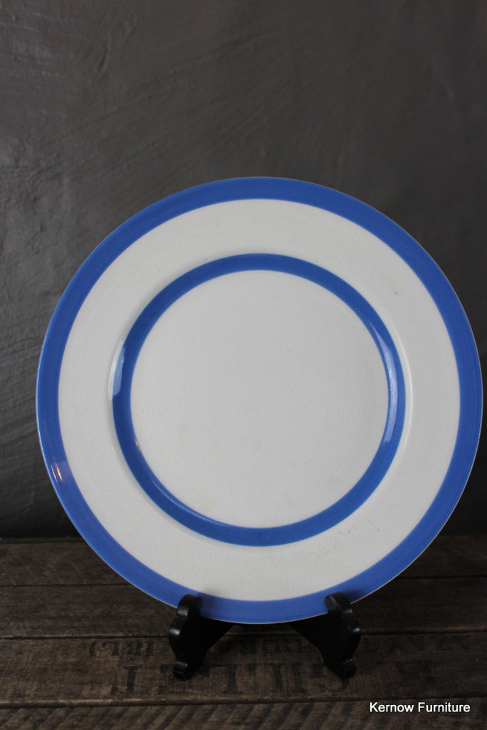T G Green Dinner Plate - Kernow Furniture