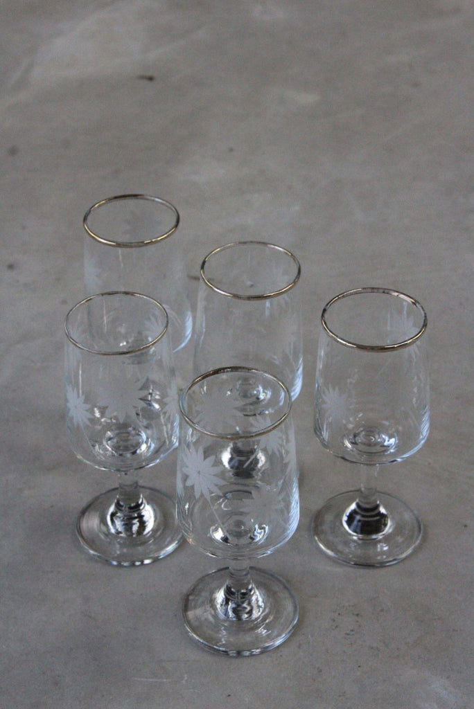 5 Etched Licqueur Glasses