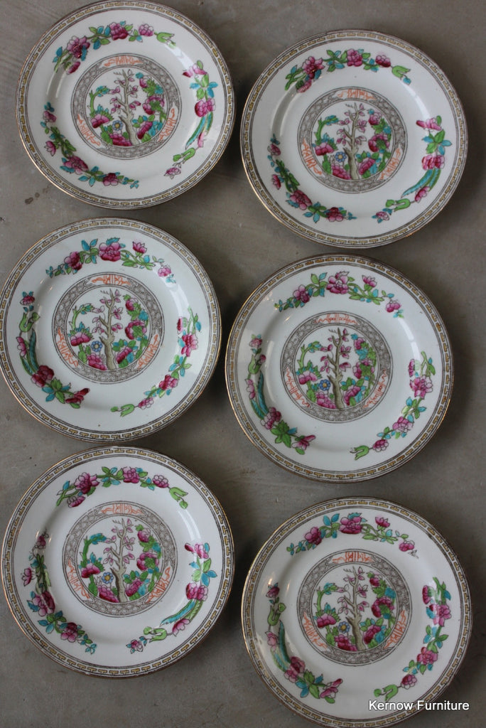 6 Balmoral China Tea Plate Indian Tree