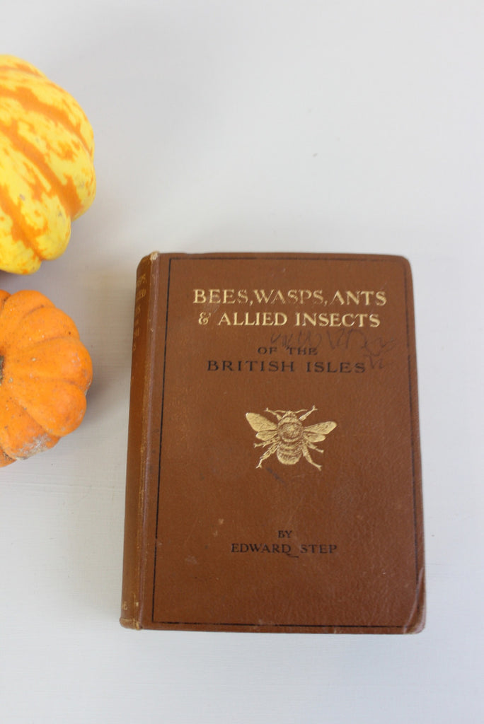 Bees Wasps Ants & Allied Insects Edward Step 1932 - Kernow Furniture