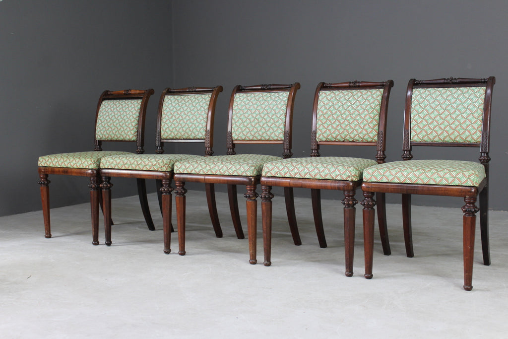 Antique Early 19th Century Rosewood Dining Chairs - Kernow Furniture