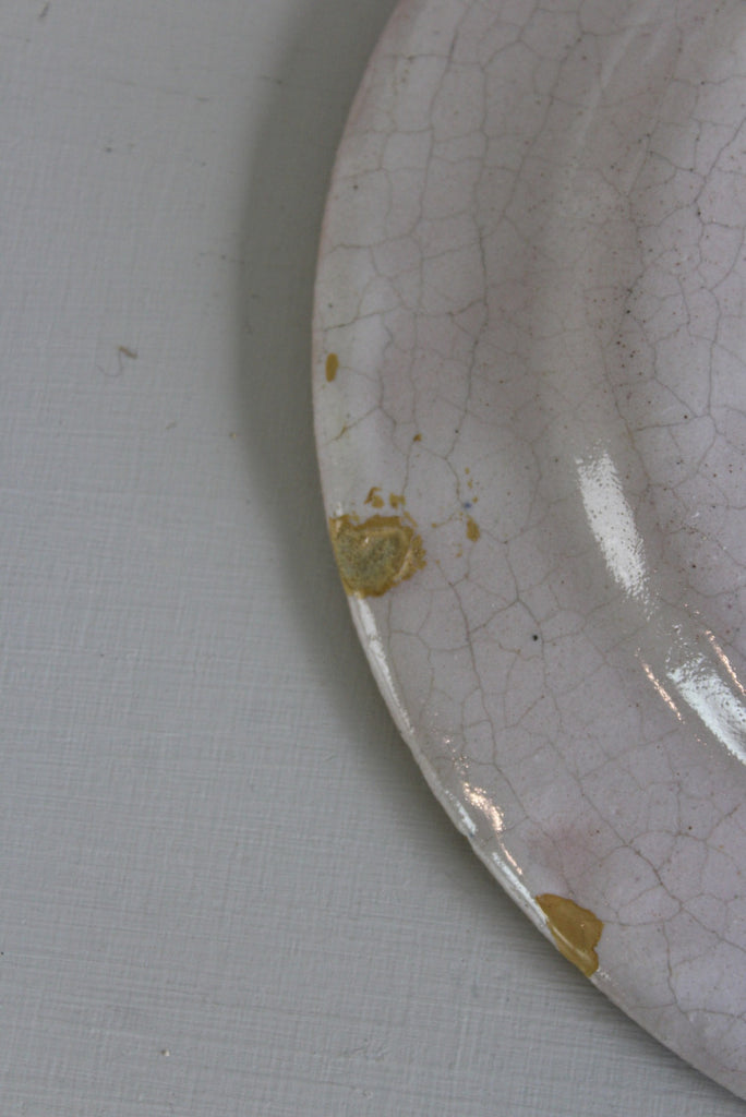 French Faience Plates - Kernow Furniture