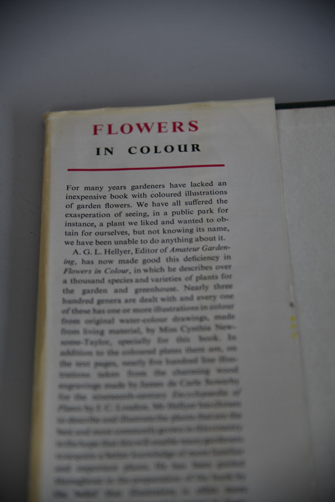 Flowers In Colour AGL Hellyer - Kernow Furniture