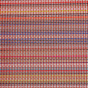 20 X 30 Multi-Color Vinyl Mesh