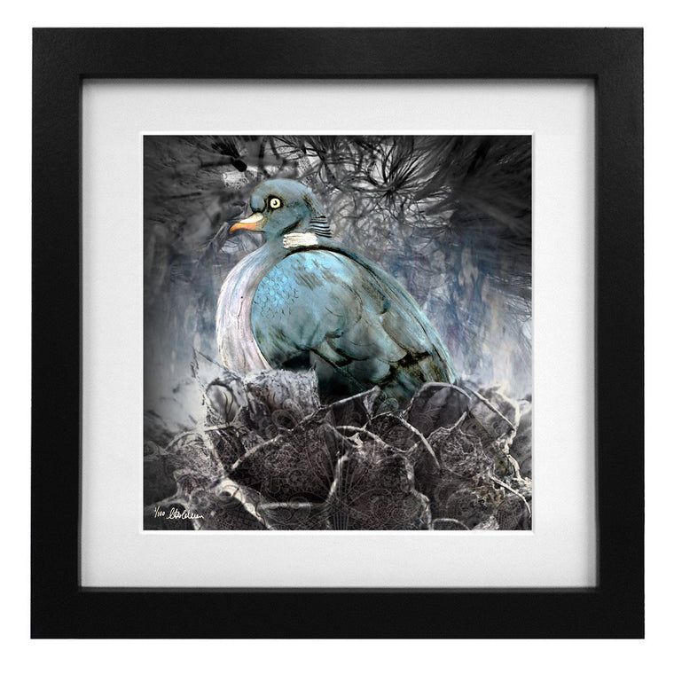 Limited Edition Nesting Pigeon Art Print