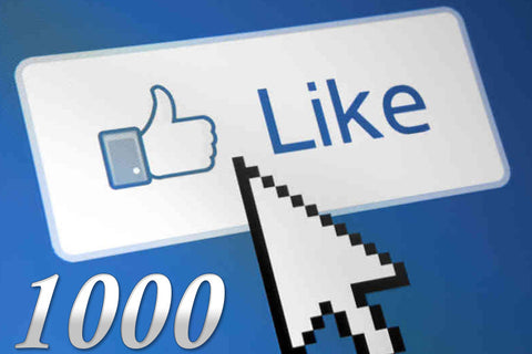 1000 Facebook Page Likes - Las Vegas SEO & Internet Marketing Company