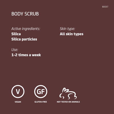 Silica Body Scrub Travel Size
