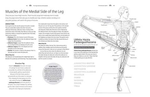 The Yoga Anatomy Coloring Book A Visual Guide To Form Function