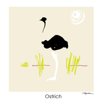 NEW LOW PRICE/Ostrich