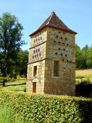 Columbidae Dovecotes and Pigeon Houses in France
