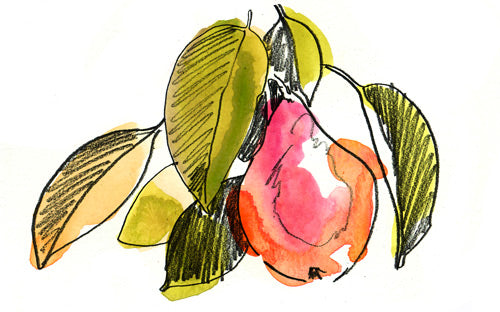 Pear Fruit Necklace & Jewelry