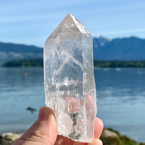 Himalayan Clear Quartz Crystal with Chlorite