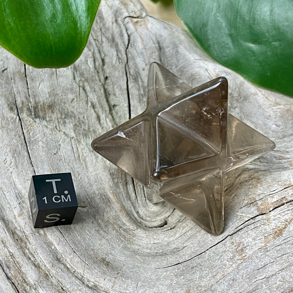 Rutilated Smoky Quartz Crystal | Success and Overcoming Obstacles