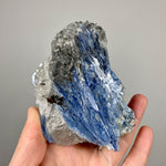 Blue Kyanite Crystal Cluster