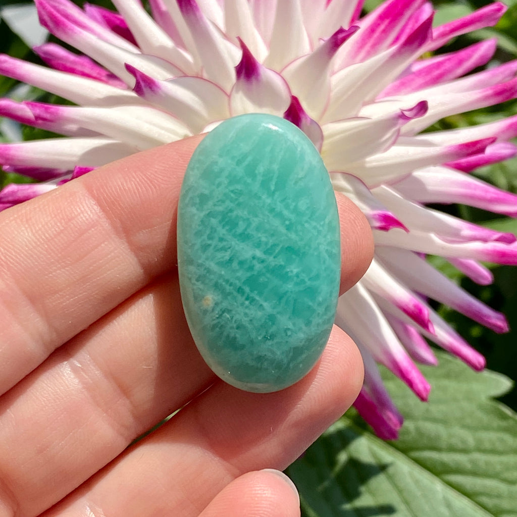Chrysocolla and Malachite Natural Stone Cabochon