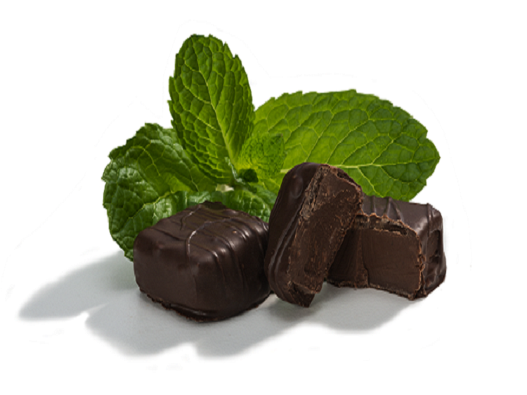 Dark Chocolate Covered Cool Mint Candy, All Natural Sugar Free with Xylitol by Dr. John's Candies