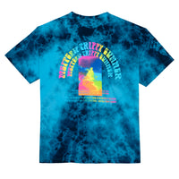 Trippy Summer T-Shirt, Tie Dye Blue