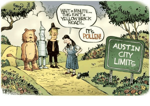 wait a minute this isn't the yellow brick road it's pollen austin city limits