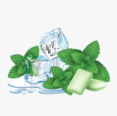 Mint and Menthol