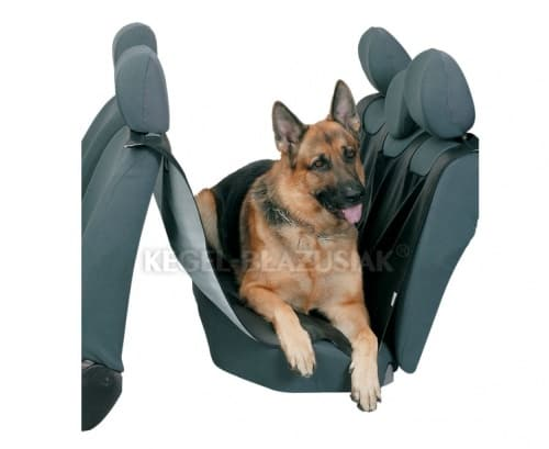 Kegel-Car Seat Cover For Dogs Reks
