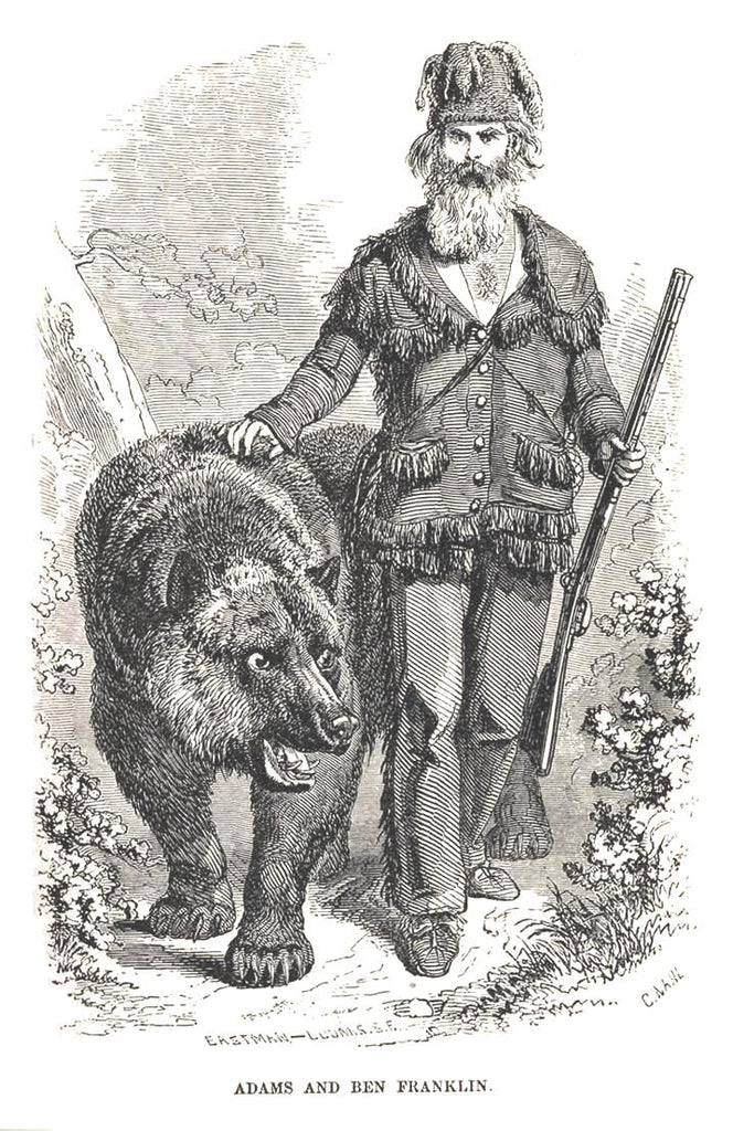 Artwork of Grizzly Adams with his beard