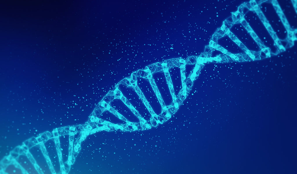 DNA strand exemplifying that a patchy beard is partly genetics