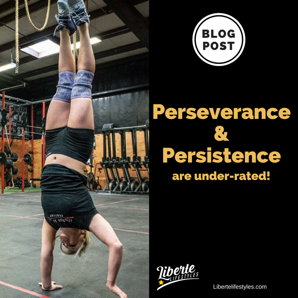 Perseverance and Persistence are under rated