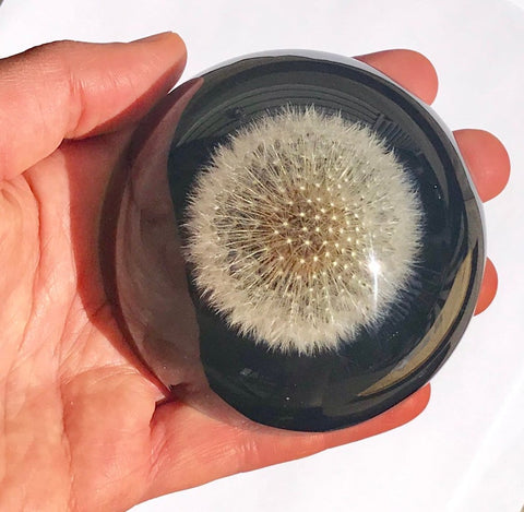 Paperweight Half Circle with Dandelion | Half Round Glass Paperweight | Handmade in USA