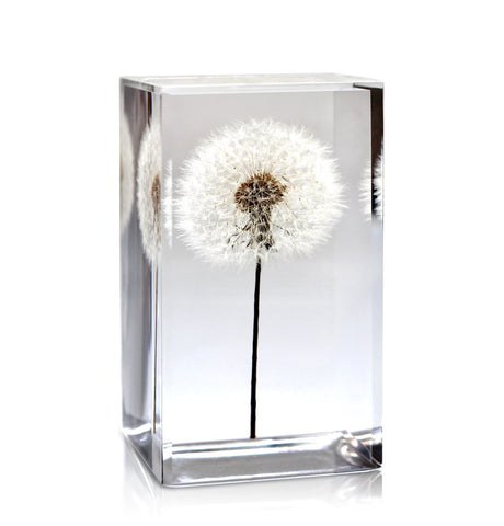 Paperweight Custom with Dandelion | Square Glass Paperweight | Engraved | Handmade in USA