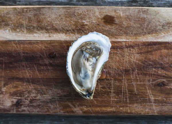What is an Oyster Snob?