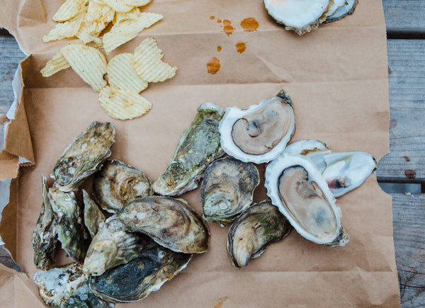 50 Count Damariscotta River Wild Oysters - Free Shipping!