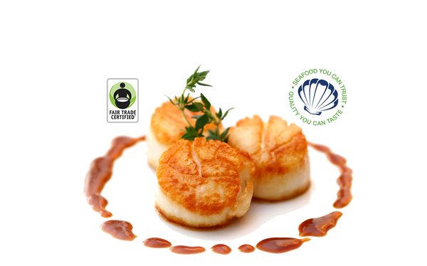 BRISTOL GULF OF MAINE SCALLOPS - 1LB - ADD-ON