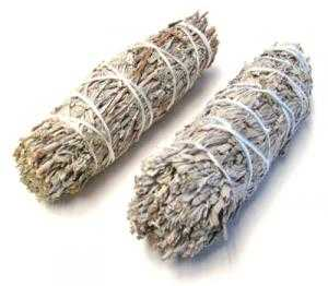 Smudge - Blue Sage Stick 4in - High Ho Gems and Crystals
