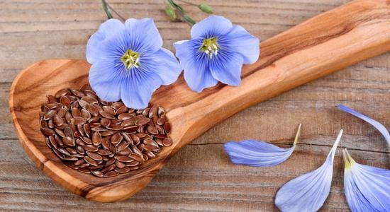 Herbs to Lower Cholesterol