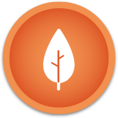 Herbal Blend Icon