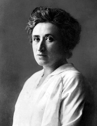 Solidarity Membership - Rosa Luxemburg Level
