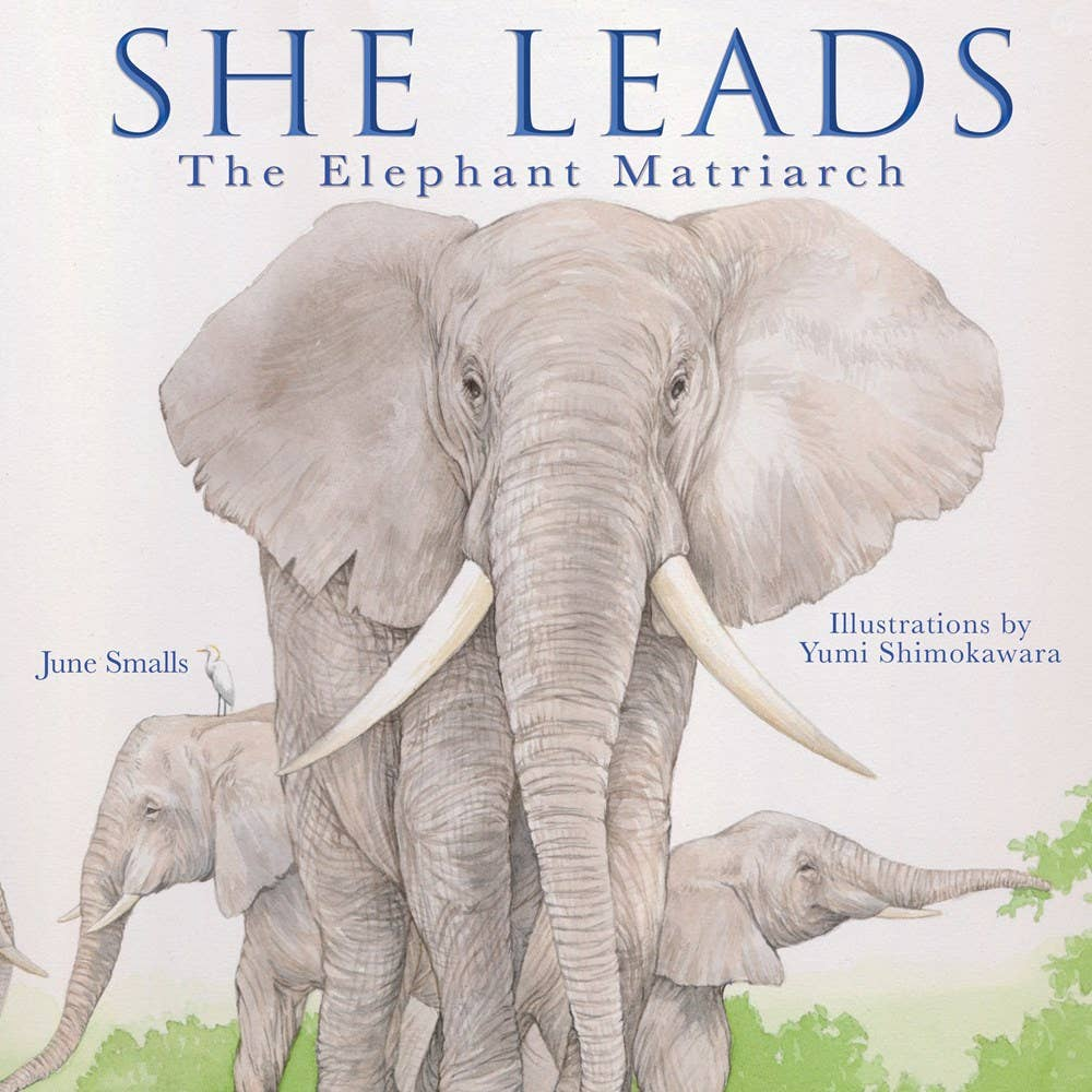 She Leads: The Elephant Matriarch Children's Book