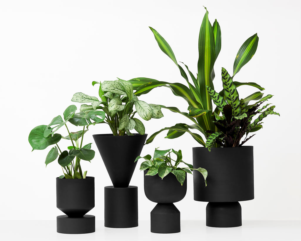 LLOT LLOV - Cir-Tri-Cut Planter